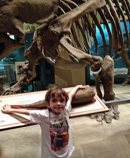 Smithsonian National Museum of Natural History, by Sarah R
