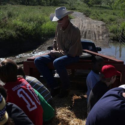 Cattle Farm School.