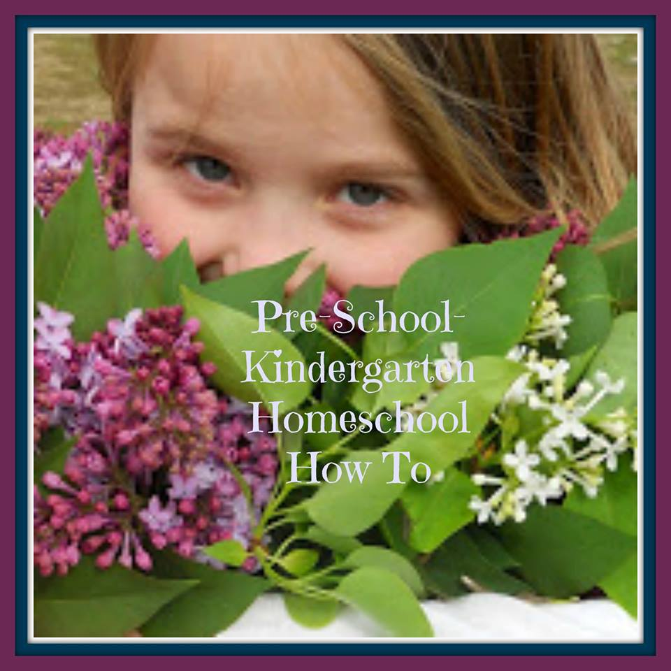 Preschool and Kindergarten: A Homeschool How-To, reposted from Lisa at Golden Grasses